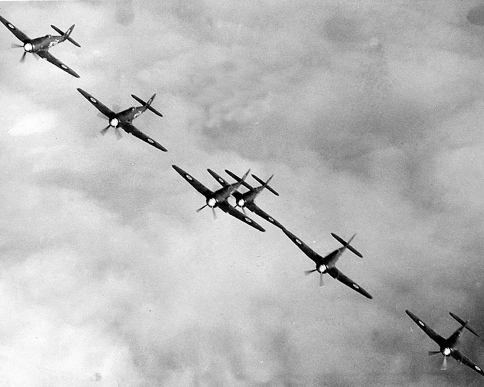 Sea Fury Aircraft Over Halifax
