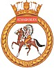 HMCS Athabaskan badge